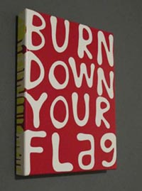 burn down your flag