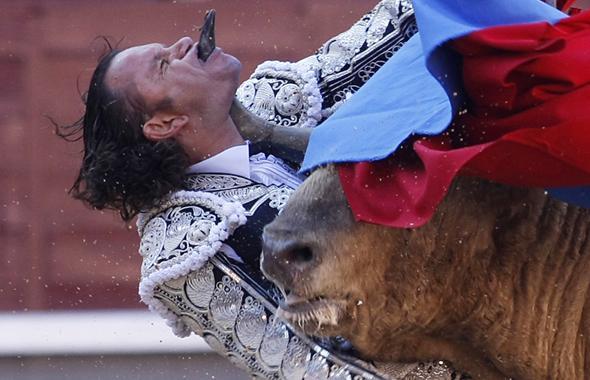 le torero espagnol Julio Aparicio encorné